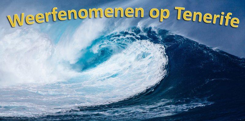 Tenerife-Connect fenomeen meteorologie temperatuur weer zeedeining mar-de-fondo weerfenomeen golven
