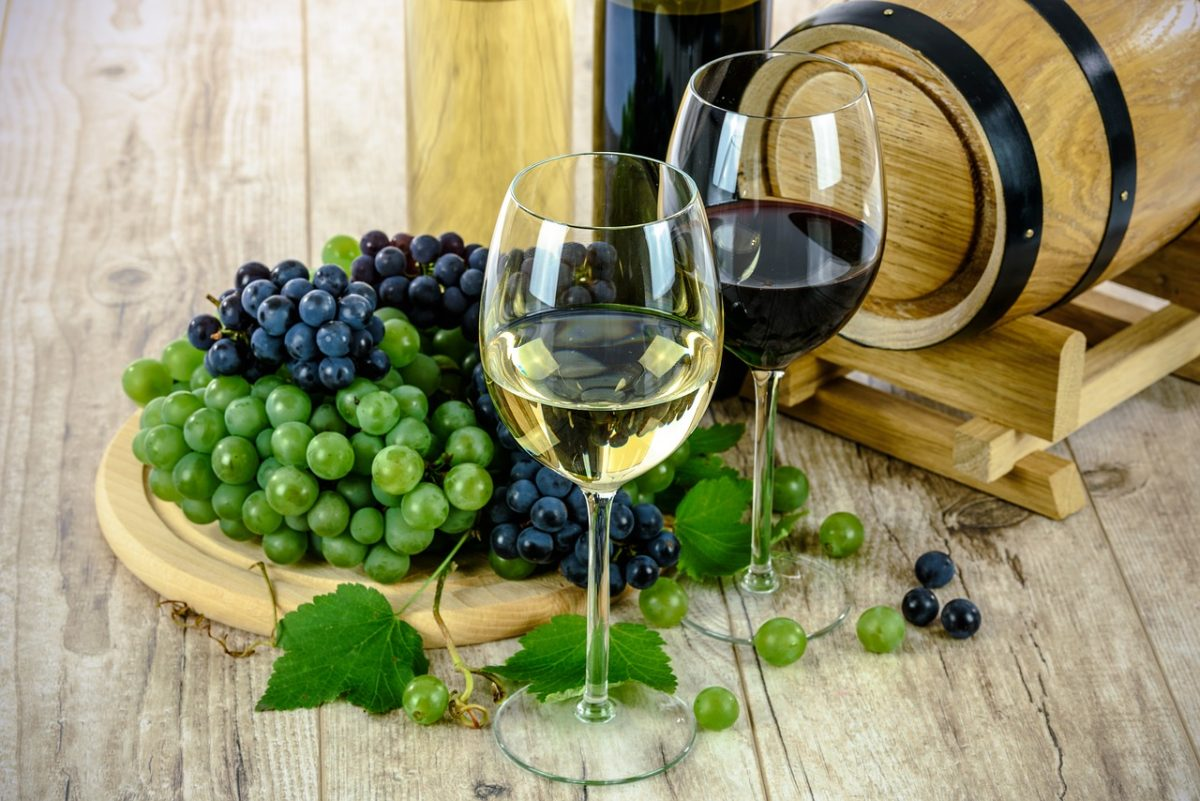 Tenerife-Connect druiven wijn wijngaard wijnsoorten wijnstok
