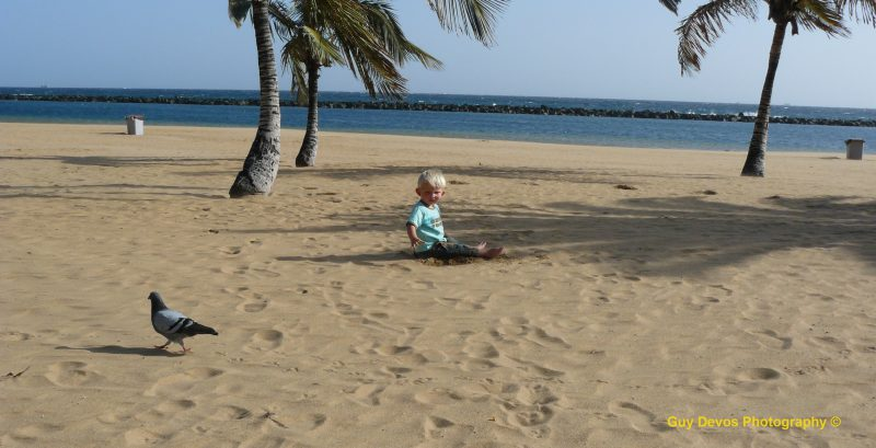 Tenerife-Connect kust playa strand zand