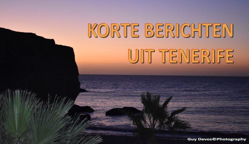 Tenerife-Connect kort nieuws actueel bericht