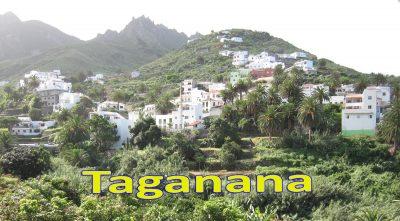 Tenerife-Connect Taganana uitstap