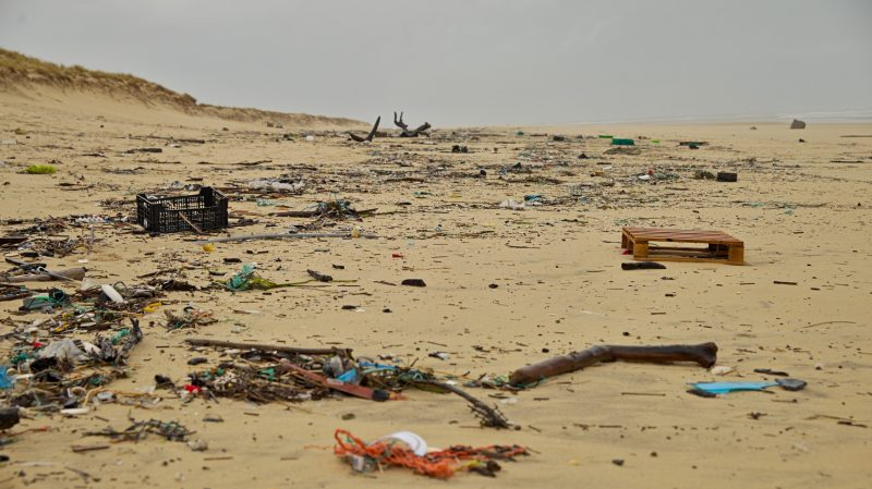 Tenerife-Connect afval zwerfvuil opkuis reiniging strand Coca-Cola