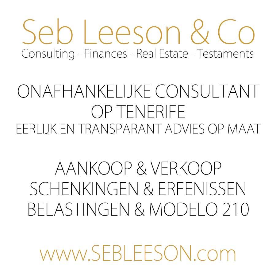 Seb Leeson consultant